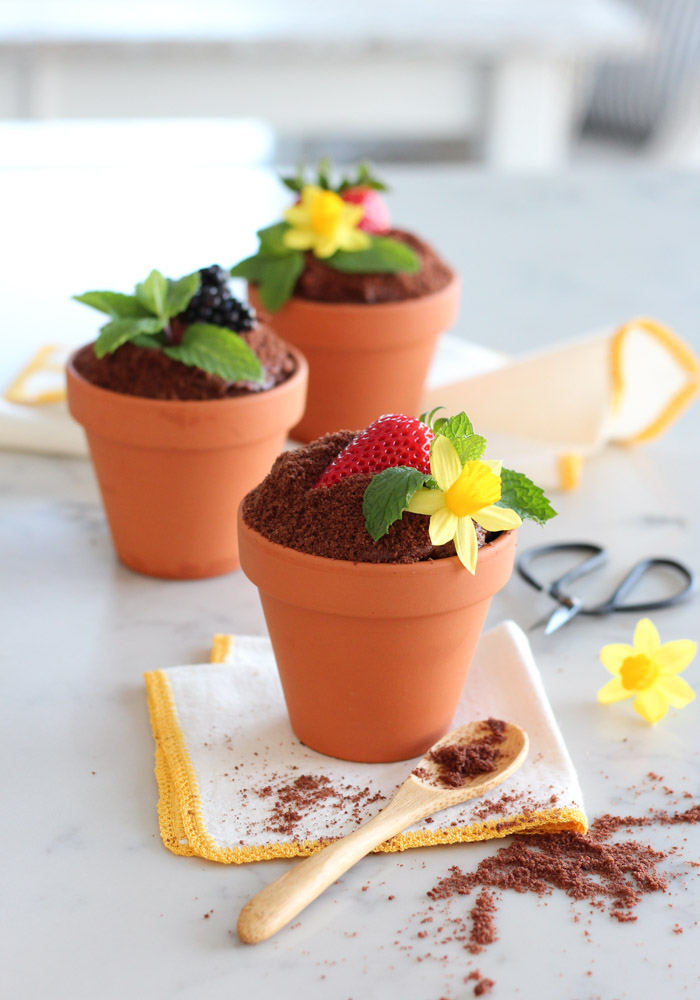 Spring Flower Pot Cakes Made with Chocolate Cake, Frosting, Crumbs, Fresh Berries and Mint
