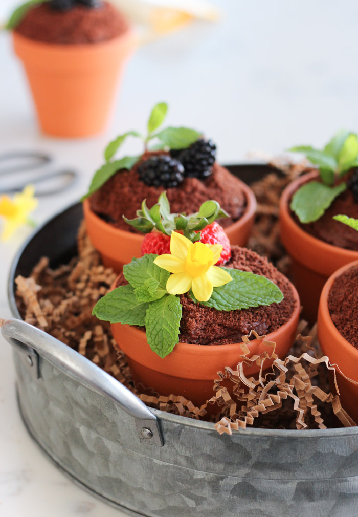 Flower Pot Cakes in Galvanized Tray for Easter or Spring