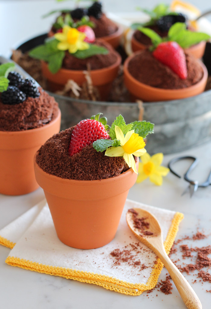 Spring Flower Pot Cakes Made with Chocolate Cake, Frosting, Crumbs, Fresh Fruit and Mint