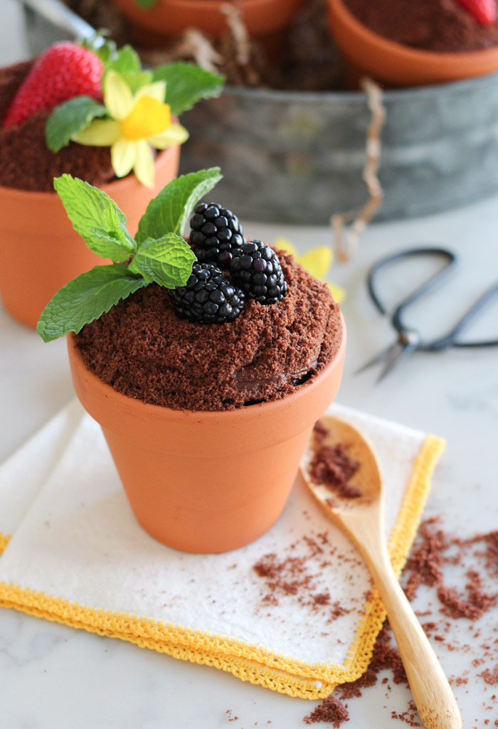Chocolate Cake Baked in Flower Pots and Topped with Frosting, Crumbs, Berries and Mint