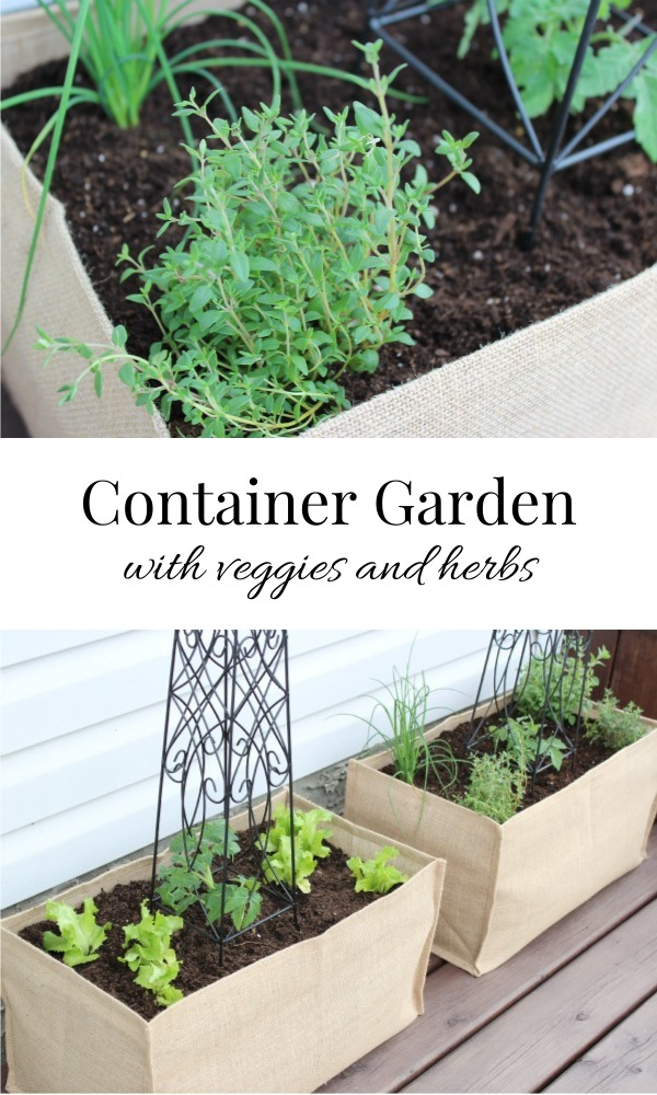 Kitchen Container Garden with Vegetables and Herbs - Burlap Planter
